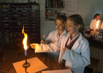 Roedean Science Day